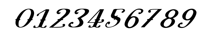 Pugsley Oblique Font OTHER CHARS