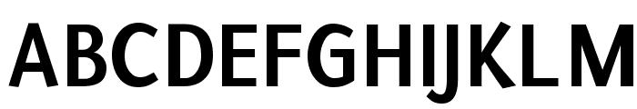 Puritan Bold Font UPPERCASE