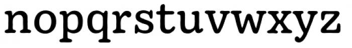 Pueblito Book Font LOWERCASE