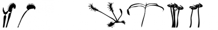 PYGardens Landscape Font LOWERCASE