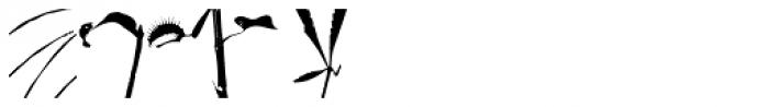 PYGardens Portrait Font LOWERCASE