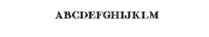 Quality Decor.ttf Font LOWERCASE