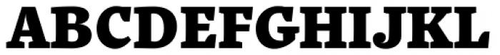 Quercus 10 Black Font UPPERCASE