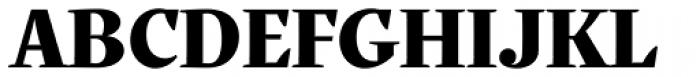 Quercus Serif Black Font UPPERCASE