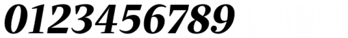 Quercus Serif Bold Italic Font OTHER CHARS