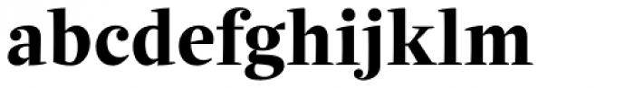 Quercus Serif Bold Font LOWERCASE