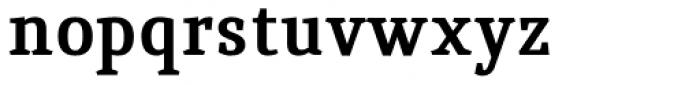 Quiroga Serif Std Bold Font LOWERCASE
