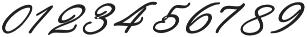 Rachela Bold Italic Regular otf (700) Font OTHER CHARS