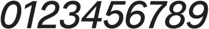 Radnika Medium Italic ttf (500) Font OTHER CHARS