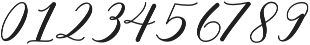 RajaAmpat Swsh otf (400) Font OTHER CHARS