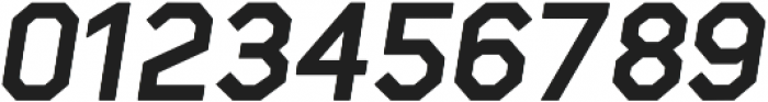 Raker Display Heavy Italic otf (800) Font OTHER CHARS