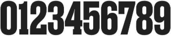 Rama Slab E Bold otf (700) Font OTHER CHARS