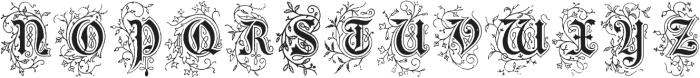 RaraBeleza ttf (400) Font LOWERCASE
