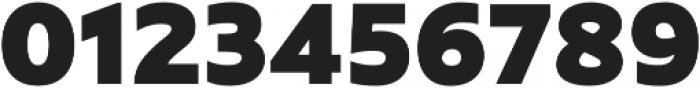 Rawson Pro ExtraBlack otf (900) Font OTHER CHARS
