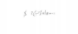 Rachela Script Alternative 4.ttf Font OTHER CHARS