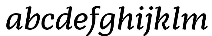Radcliffe Text Medium Italic Font LOWERCASE