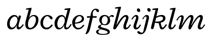 Radley Italic Font LOWERCASE