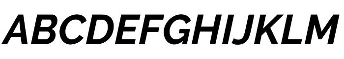 Raleway Bold Italic Font UPPERCASE