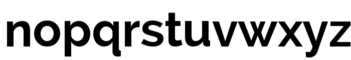 Raleway Bold Font LOWERCASE