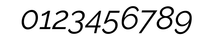 Raleway Italic Font OTHER CHARS