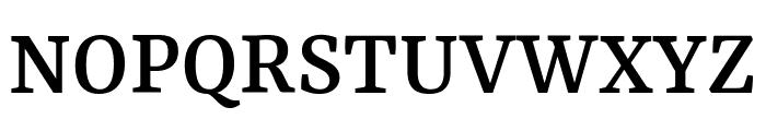 Rasa Medium Font UPPERCASE