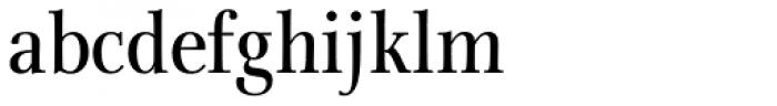 Rabenau Pro Condensed Book Font LOWERCASE