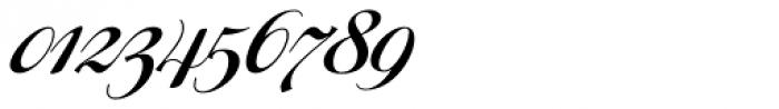Ragazza Script Font OTHER CHARS