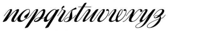 Ragazza Script Font LOWERCASE