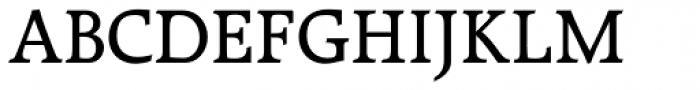 Raleigh LT Std Medium Font UPPERCASE