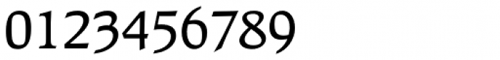 Raleigh Medium Font OTHER CHARS