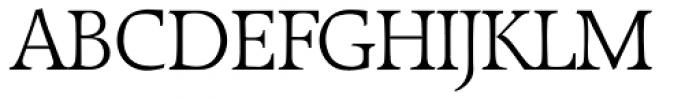 Raleigh Serial Light Font UPPERCASE