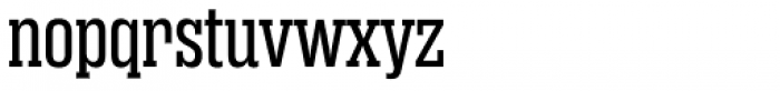 Rama Slab Exp Regular Font LOWERCASE
