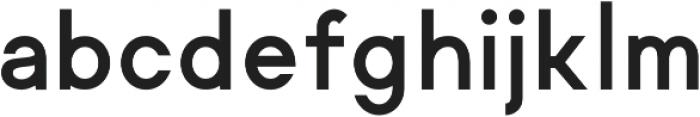 Regime ttf (700) Font LOWERCASE