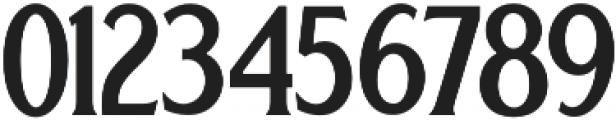 Regular Serif otf (300) Font OTHER CHARS