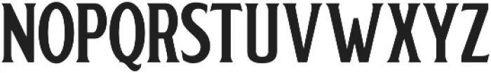 Regular Serif otf (300) Font UPPERCASE
