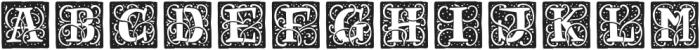 RenaissanceInitial Dots Black otf (900) Font LOWERCASE