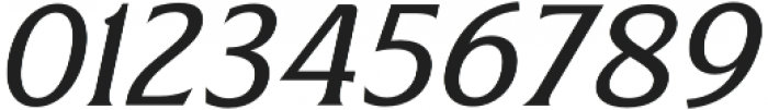 Revans Italic otf (400) Font OTHER CHARS