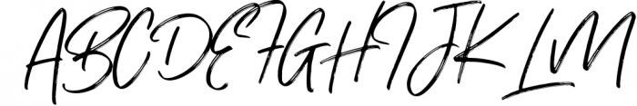Renegade - Hand Painted Signature - Font 1 Font UPPERCASE