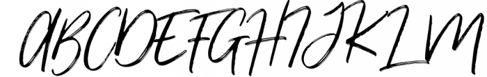 Renegade - Hand Painted Signature - Font Font UPPERCASE