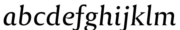 Reforma 1918 Gris Italica Font LOWERCASE