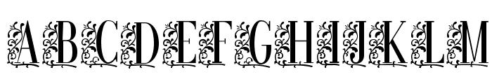RemesloSTD Font UPPERCASE