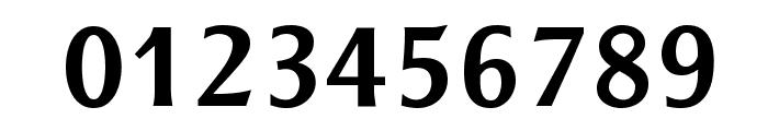 Resavska BG Sans Bold Font OTHER CHARS