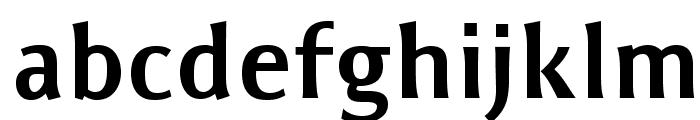 ResavskaBGSans-Bold Font LOWERCASE
