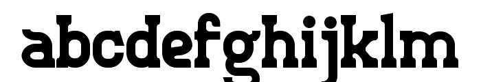 Retro Town Serif Font LOWERCASE