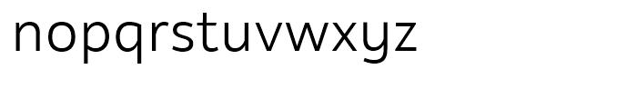 Rehn Light Font LOWERCASE