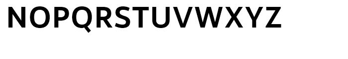Rehn Medium Font UPPERCASE