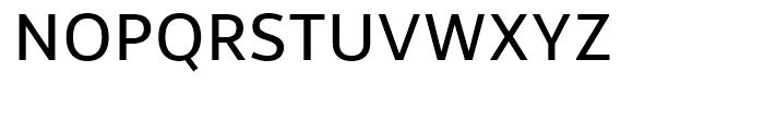 Rehn Regular Font UPPERCASE