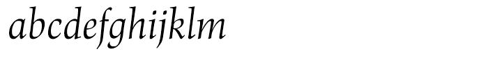 Renner Antiqua Display Italic Font LOWERCASE