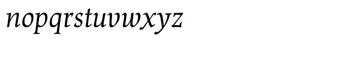 Renner Antiqua Italic Font LOWERCASE