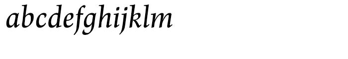 Renner Antiqua Medium Italic Font LOWERCASE